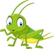 动画片滑稽的蟋蟀 库存例证