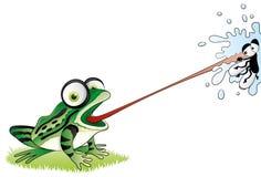 动画片滑稽的青蛙。 免版税图库摄影