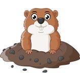 动画片滑稽的Groundhog 库存照片