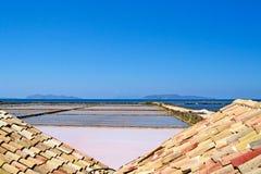 努比亚古老盐矿  库存照片