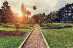 努沃勒埃利耶,斯里兰卡 日落的女王维多利亚公园 免版税库存照片