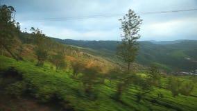 努沃勒埃利耶,斯里兰卡- 2014年3月:努沃勒埃利耶乡下的看法从移动的火车的 斯里兰卡的铁路运输 股票录像