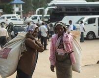 努沃勒埃利耶,斯里兰卡- 1月14 :茶捡取器妇女路的画象女性在茶工厂附近 库存图片