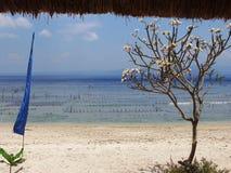 努沙Penida海滩 免版税库存图片