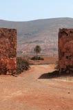 劳利瓦,费埃特文图拉岛,加那利群岛,西班牙 免版税库存照片