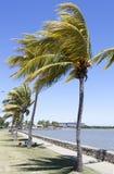 劳托卡市公园 库存图片