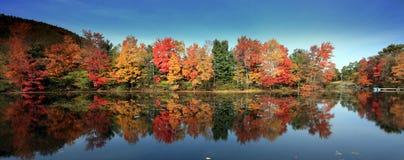 勃兰特颜色ny秋天的湖 免版税图库摄影