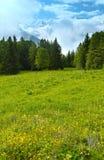 勃朗峰山断层块(从Plaine Joux郊外的看法) 图库摄影