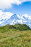 勃朗峰的美丽的景色在法国阿尔卑斯 免版税库存图片