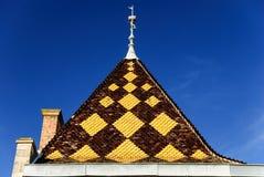 勃艮第瓦片-宫殿的屋顶伯根地,区域博若莱红葡萄酒,法国建筑风格的  图库摄影