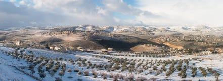 巴勒斯坦在冬天 库存照片
