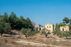 巴勒斯坦,以色列 库存照片