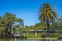 巴勒莫森林在布宜诺斯艾利斯,阿根廷 库存照片