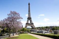 勒阿弗尔市政厅在诺曼底,法国 免版税图库摄影