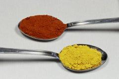 包含辣椒粉和咖喱的两把匙子 免版税库存照片