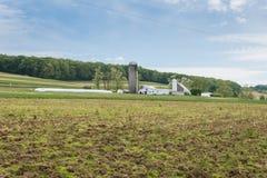 包围威廉卡因公园的农田在约克县, Pennsylva 免版税库存照片