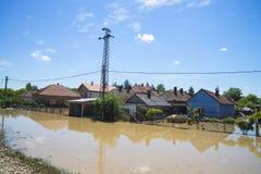 包括房子,领域,森林的伟大的洪水 库存照片