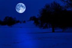 包括的充分的午夜月亮公园雪 免版税库存照片
