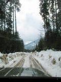 包括的山路雪乌克兰 从车窗的看法 免版税库存图片