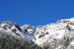 包括的山雪 免版税图库摄影