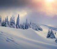 包括的树冰房子山山雪结构树 免版税库存图片
