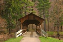 包括的桥梁 库存照片