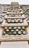 包括的梯子雪 免版税库存图片