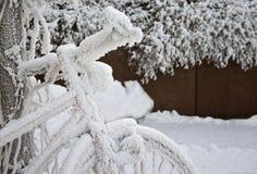 包括的横向雪 免版税库存照片