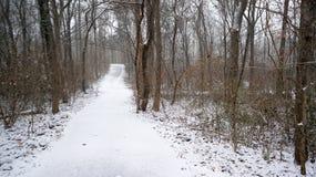 包括的路径雪 免版税库存照片