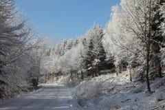 包括的雪冬天木头 库存照片