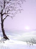 包括的雪结构树 皇族释放例证