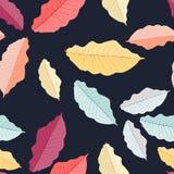 包括的8秋天eps文件离开模式向量 五颜六色的叶子 无缝的装饰品 秋季题材 皇族释放例证
