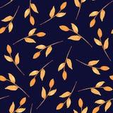 包装的无缝的样式秋天叶子,印刷品织品 水彩手拉的图象完善对案件设计,明信片, 库存例证