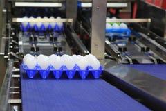 包装的鸡蛋的机器 免版税库存照片