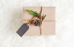 包装纸工艺在当前箱子翘曲了用杉木锥体装饰 免版税库存图片