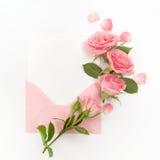 包围与白色卡片和玫瑰色背景 顶视图 平的位置 免版税库存照片