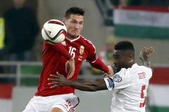 匈牙利与荷兰 挪威UEFA欧元2016年合格者淘汰赛足球比赛 免版税库存图片