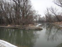 匈牙利冬天风景 库存照片