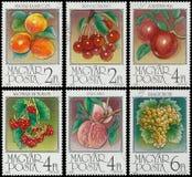 匈牙利打印的邮票显示杏子 免版税库存照片