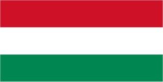 匈牙利旗子 库存例证
