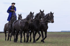 匈牙利牛仔 免版税库存图片