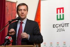 匈牙利的前总理,鲍伊瑙伊・戈尔东先生 库存图片