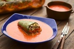 匈牙利语被烘烤的胡椒粉原料 免版税库存图片