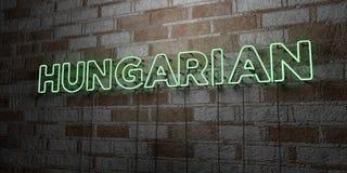 匈牙利语-在石制品墙壁上的发光的霓虹灯广告- 3D回报了皇族自由储蓄例证 库存例证