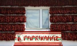 匈牙利辣椒粉 库存图片