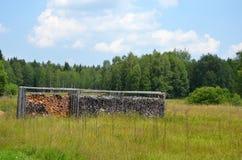 化合物在森林附近的裁减木头 库存照片