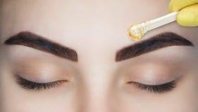 化妆师在永久构成前做法采她的眼眉, 免版税库存图片