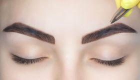 化妆师采她的从一个少妇的眼眉美容院的 免版税库存图片