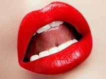 化妆用品有选择性重点的构成 红色嘴唇光泽和唇膏 时尚嘴唇构成 肉欲的女性嘴 免版税库存照片