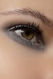 化妆用品,眼影膏。 方式亮光冬天闪烁眼睛构成宏指令  免版税库存照片